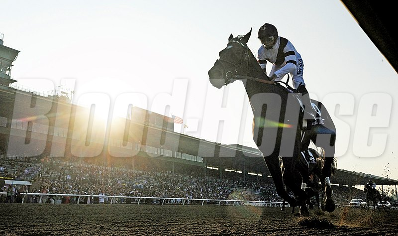 Royal Delta wins the $2,000,000 Breeders' Cup Distaff (gr. I) at Santa Anita Park.