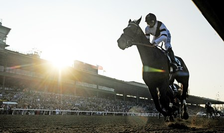 Royal Delta wins the Breeders' Cup Distaff (G1) at Santa Anita Park.