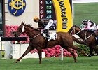 Able Friend winning the Chairman's Trophy at Sha Tin racecourse.