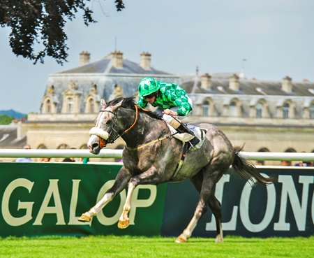 The Grey Gatsby wins the 2014 Prix du Jockey Club at  Chantilly