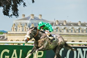 Frank Gillespie's British-based The Grey Gatsby pounced from off the pace and drew off to win the Prix du Jockey Club (Fr-I, French Derby) in an upset at Chantilly.