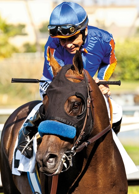 Jockey Mike Smith has a moment with Game On Dude after their second straight Grade I, $500,000 Hollywood Gold Cup for the second straight year, July 6, 2013 at Betfair Hollywood Park, Inglewood CA.