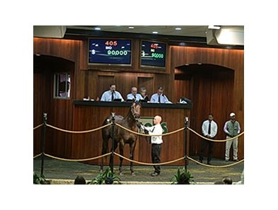 Hip 405, Euro Exchange, an unraced 3-year-old colt by Exchange Rate out of the Rahy mare Merciful, brought $90,000 to top the second and final day of Ocala Breeders' Sales Co.'s winter mixed sale Jan. 29.