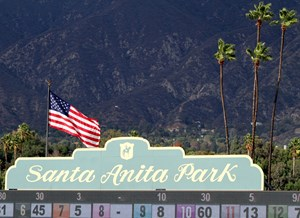 A scene at Santa Anita Park on November 1, 2014. Photo By: Chad B. Harmon