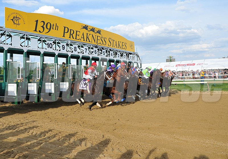 The field breaks from the starting gate in Preakness 134.