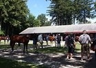 The Fasig-Tipton Saratoga sale of selected yearlings.