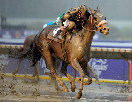 Maryfield  was claimed for $50,000 in the 4th race at Santa Anita on January 16, 2006. She was the first ex-claimer to win a Breeders' Cup race.