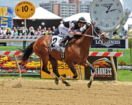 Happy My Way streaked wire to wire in the $150,000 Grade III Maryland Sprint Handicap presented by Jagermeister at Pimlico Race Course, securing his first graded stakes score and building a three-race winning streak.