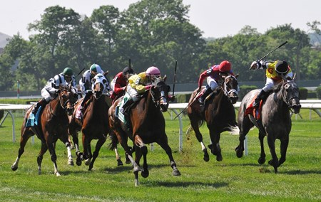 Shakeira, (pink cap) Rajiv Maragh up, runs by Inimitable Romanee (#7) to win the Mount Vernon Stakes at Belmont Park.