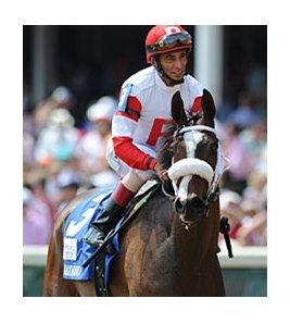 "Stephanie's Kitten<br><a target=""blank"" href=""http://photos.bloodhorse.com/AtTheRaces-1/at-the-races-2012/22274956_jFd5jM#!i=1829519289&k=VJ25t2Qb"">Order This Photo</a>"