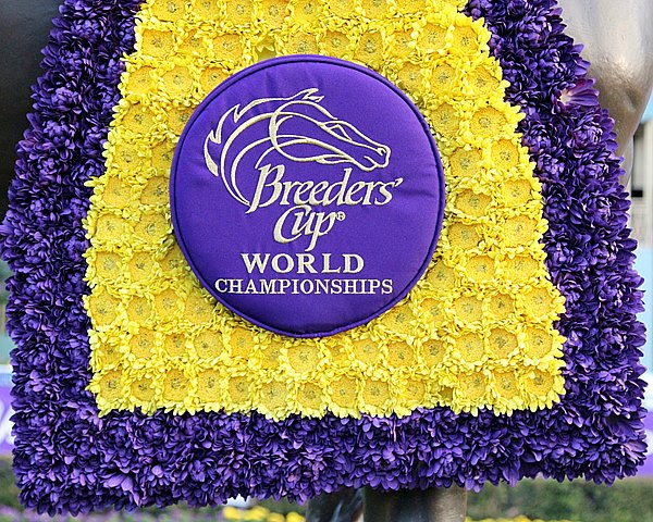 Breeders' Cup blanket. Photo By: Chad B. Harmon