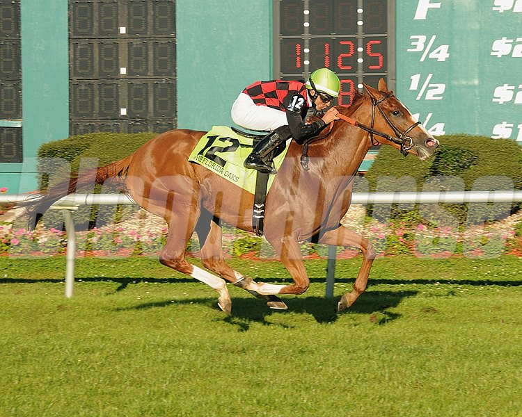 Testa Rossi and jockey Jose Lezcano win the Grade III Florida Oaks at Tampa Bay Downs.