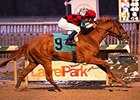 Majestic Affair, Lindisfarne Win at Laurel