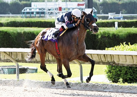 Starship Truffles takes off in the stretch to win the 2013 Grade I Princess Rooney Handicap at Calder Race Course.