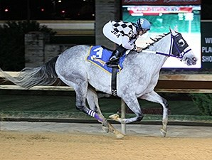 Fear the Facelift wins the 2013 West Virginia Jefferson Security Bank Cavada Breeders' Classic Stakes.