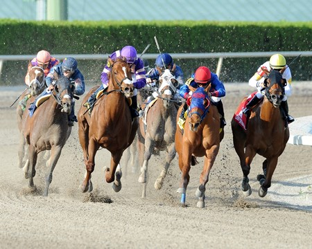 Final turn of the Grade II Inside Information Stakes at Gulfstream Park in Florida.
