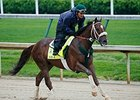 Kentucky Derby Notes, April 20
