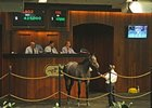 Hip No. 1002, a gray/roan colt by Street Sense topped the final session, bringing $425,000.