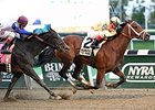 Dame Dorothy wins the Turnback the Alarm Stakes.