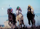 Alphabet Soup (middle) prevails over Louis Quatorze (right) and Cigar in 1996 Breeders' Cup Classic