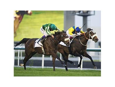 First City (left) defeated Mahbooba (right) by a nose in the Cape Verde Stakes.