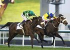 First City (left) overtakes Mahbooba to win the Cape Verde Stakes.