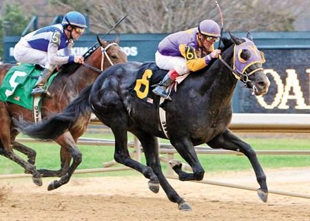 ARCHARCHARCH The Southwest Stakes - 46th Running Hot Springs, Arkansas 2/21/2011 Purse $250,000 One Mile  1:38.1 Robert Yagos, Owner William H. Fires, Trainer Jon Court, Up J P's Gusto (2nd) Elite Alex (3rd) $31.00  $8.80  $4.80