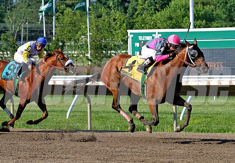 Lady Sabelia #4 with Horacio Karamanos riding won the $70,000 Red Cross Stakes at Monmouth Park.