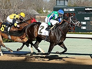 Gentlemen's Bet wins the 2015 Hot Springs Stakes.