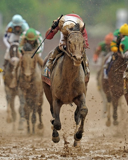 Orb, Joel Rosario up, wins the 139th Kentucky Derby at Churchill Downs... © 2013 Rick Samuels/The Blood-Horse