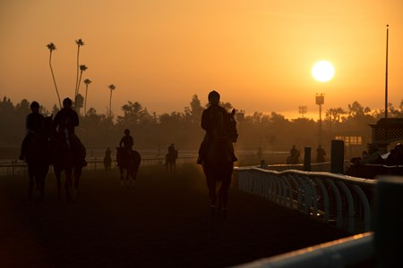 Caption:  Sunrise