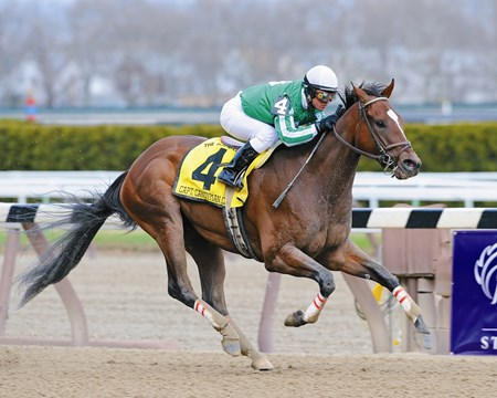 Capt. Candyman Can and Javier Castellano win The Bay Shore at Aqueduct Race Track...Taqarub was second and Yano third