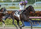 "Edgard Zayas celebrates victory aboard C. Zee in the Gulfstream Park Sprint Stakes.<br><a target=""blank"" href=""http://photos.bloodhorse.com/AtTheRaces-1/At-the-Races-2015/i-NbGcQtr"">Order This Photo</a>"
