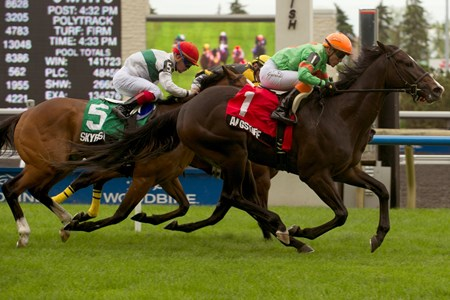 Jockey Luis Contreras guides Langstaff to victory in the Bold Ruckus Stakes over the E.P. Taylor Turf Course at Woodbine.