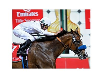 Dubai World Cup winner is currently the world's top ranked thoroughbred.