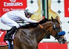 Well Armed was reported to come out of his 14-length Dubai World Cup in good shape.