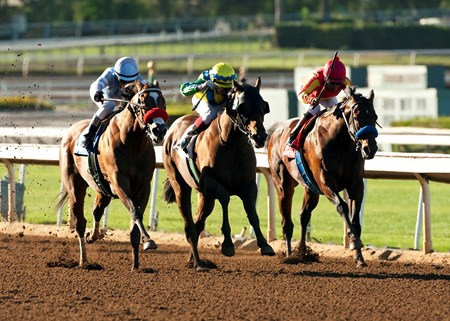 Rich Tapestry and jockey Olivier Doleuze (middle) overpower Goldencents (left) and Secret Circle (right) to win the Grade I $300,000 Santa Anita Sprint Championship at Santa Anita Park.
