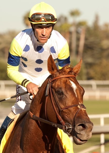 Rebounding from a dismal try in the Arlington Million (gr. IT), Indy Point charged to victory in the $150,000 John Henry Turf Championship (gr. IIT) Sept. 29 at Santa Anita Park for red-hot jockey Gary Stevens.