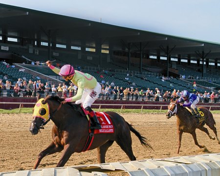 Belle Gallantey, a Pegasus sale grad, winning the Delaware Handicap