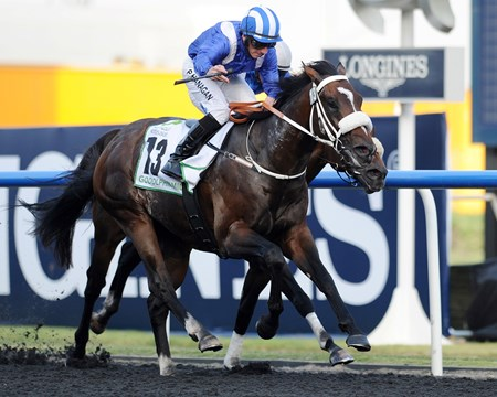 Soft Falling Rain with Paul Hanagan up runs in the Godolphin Mile, Meydan, Dubai World Cup Day March 30, 2013, photo by Mathea Kelley
