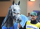 Frosted, Keen Ice Drill Toward Belmont