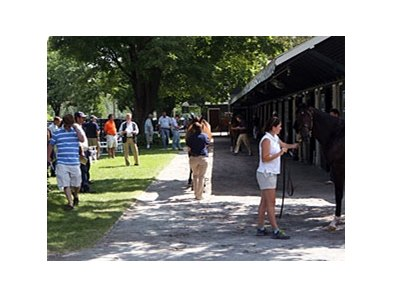 Fasig-Tipton Saratoga sale of select yearlings
