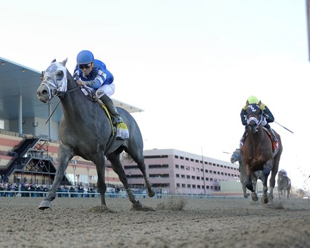 After three solid races without a win, Frosted took things to another level with a two-length victory in the Grade I $1 million TwinSpires.com Wood Memorial Stakes at Aqueduct Racetrack.