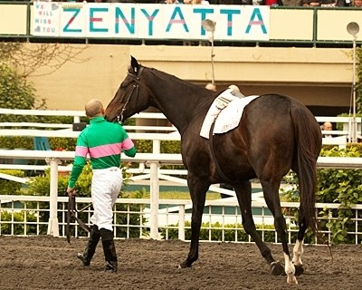Zenyatta retires and says goodbye to California with Mike Smith