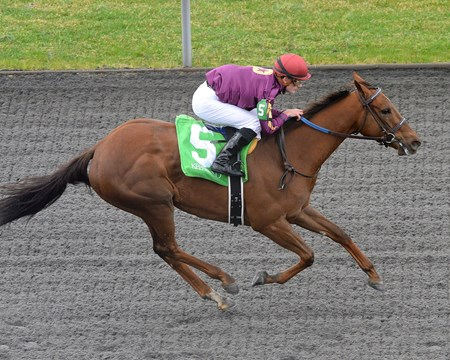 Share the Sugar with Julien Leparoux up, wins the $50,000 maiden claiming race at Keeneland this weekend.