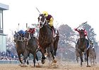 Golden Lad leads them home in the Essex Handicap at Oaklawn Park.