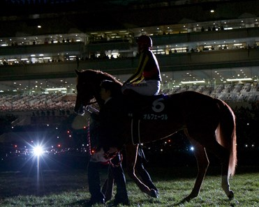 Orfevre walks in the spotlight during his retirement ceremony.