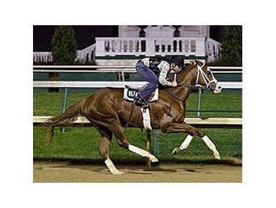 Will Take Charge breezed five furlongs Nov. 22 at Churchill Downs in 1:01.