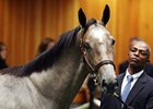 Wait No More at the 2012 Fasig-Titpon Saratoga select yearling sale, where she brought $1,575,000.