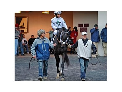 "Revolutionary<br><a target=""blank"" href=""http://photos.bloodhorse.com/AtTheRaces-1/at-the-races-2013/27257665_QgCqdh#!i=2429949075&k=DHqgvFM"">Order This Photo</a>"